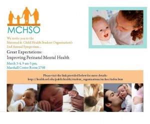 Great Expectations:  Improving Perinatal Mental Health
